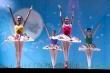 Festival de Dança Judô Ballet Bastos arrecada alimentos para Apae